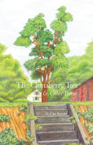 The Chinaberry Tree & Other Poems